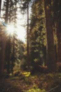 صور بنات استراليات عاريات