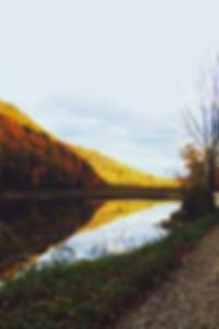 الحمار مارس الجنس الاباحية نجمة
