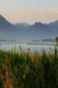 جيسيكا ألبا وهمية صور عارية